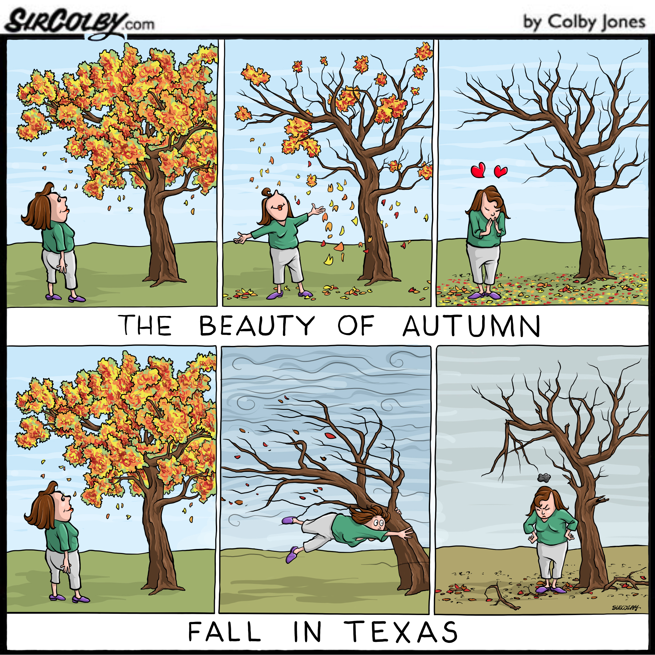 Fall in Texas